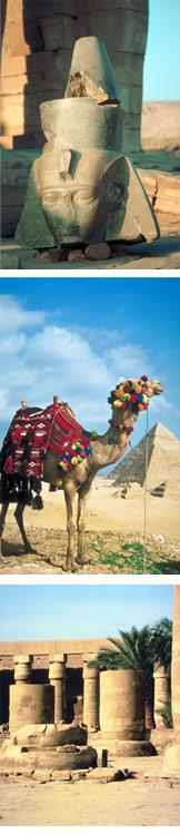 Description: http://www.mymedvacations.com/egypt.jpg